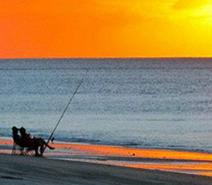 MaxiMotto Image:Beach fishing at Hervey bay